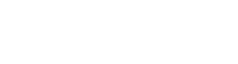 NiteFlite Courier Services